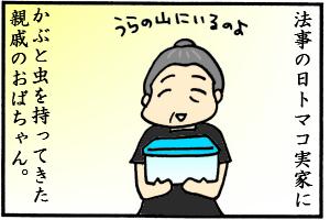 かぶと虫5匹も…!!