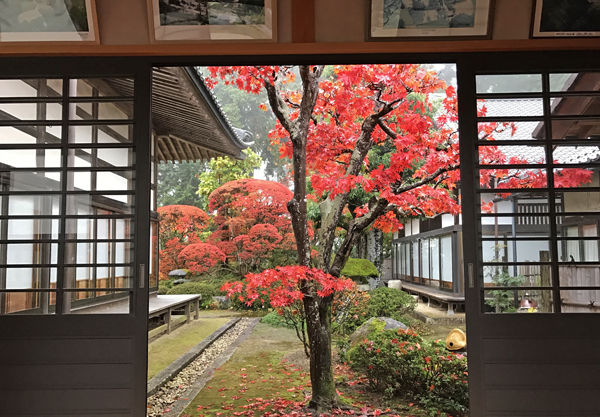 0松源寺中庭の紅葉_600