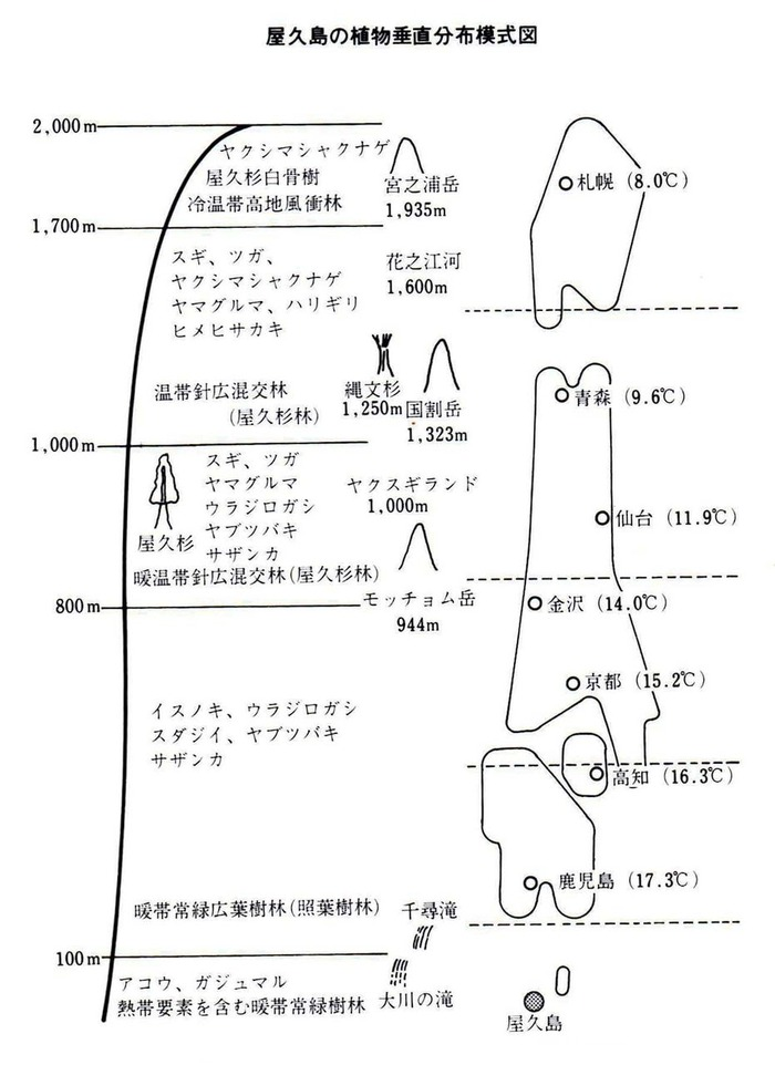 0屋久島の植物分布図