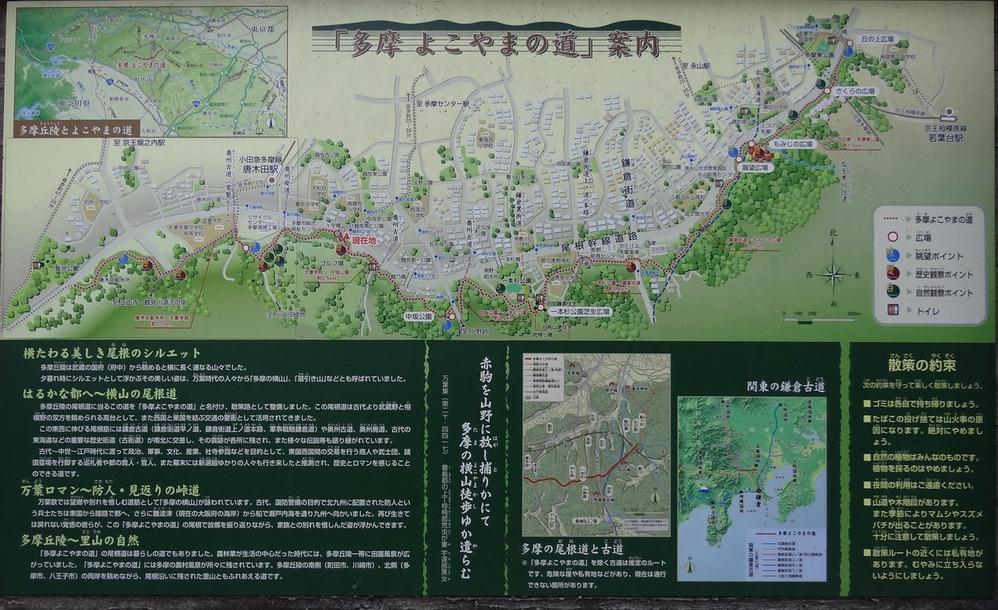 多摩よこやまの道案内図