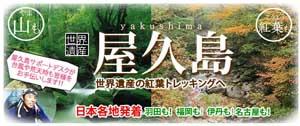 屋久島HISのコピー