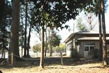 木々の中の公会堂