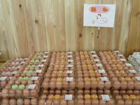 市川さんの鶏卵