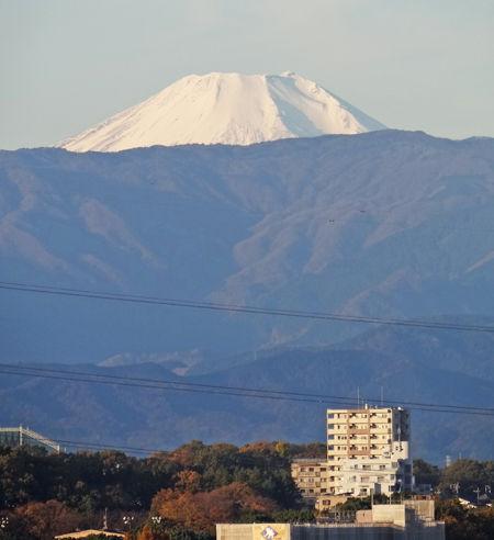 0初冬の富士山_450