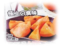 柿 恋姫250