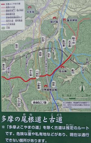 多摩の尾根道と古道
