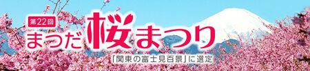 桜まつりタイトル450