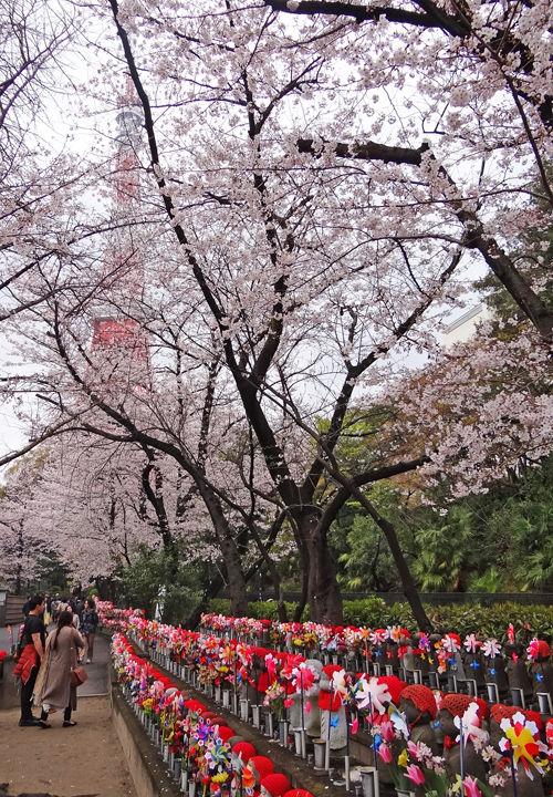 0増上寺境内から見た東京タワー・地蔵500