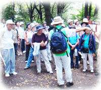 観光ガイド200