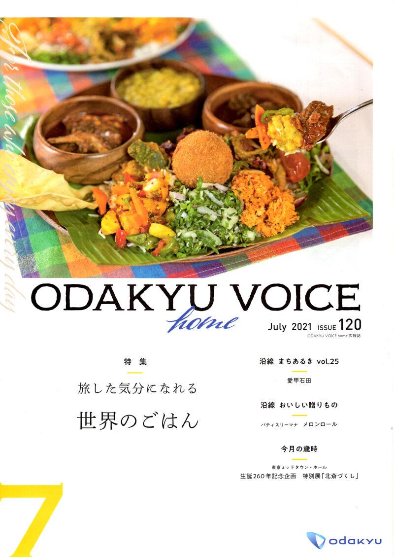 VOICE1 800