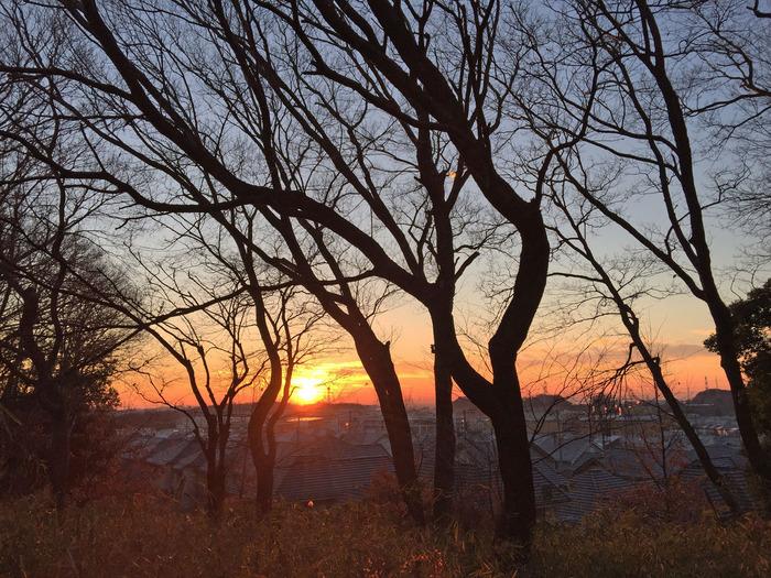 はるひ野4丁目の夜明け_2000_
