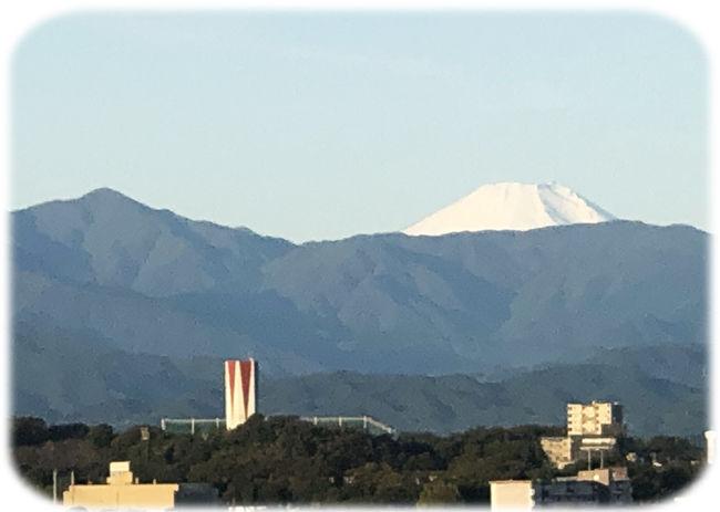 0富士山と蛭が岳650