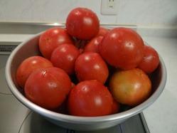 自家製トマト250720