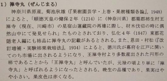 0禅寺丸解説