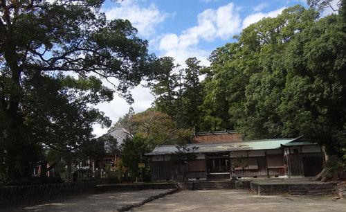 0浜の宮大神社500