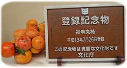 0登録記念物と禅寺丸柿250