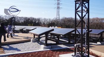 屋上緑化と太陽光 風力発電