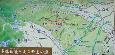 多摩よこやまの道