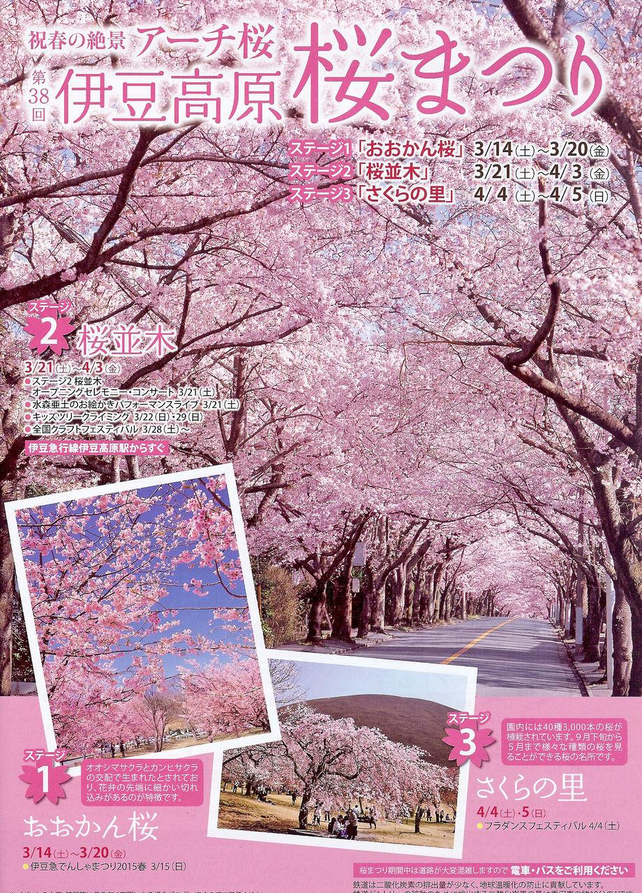 0桜まつりチラシ