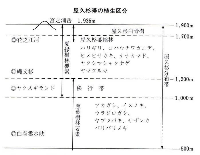 0屋久杉の植生分布図