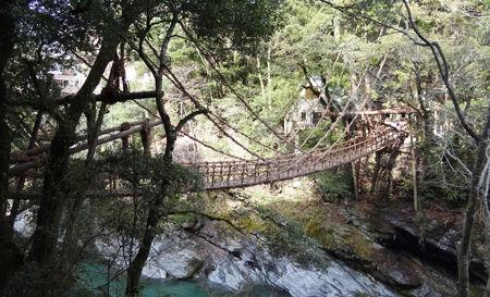 かずら橋2450