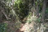 昔の布田道