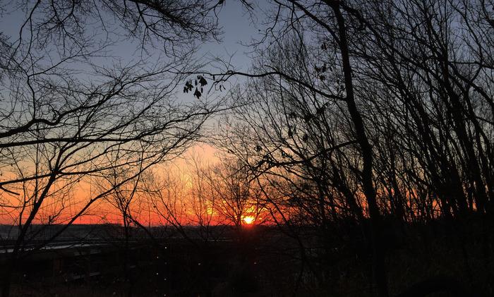 よこやまの道から望む夜明け_2000