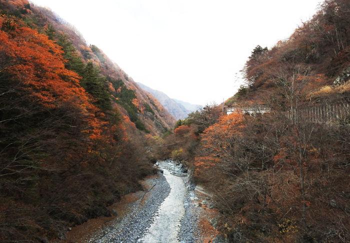 0吊橋から早川上流を望む700