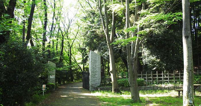一本杉公園入口700