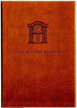 パスポート250