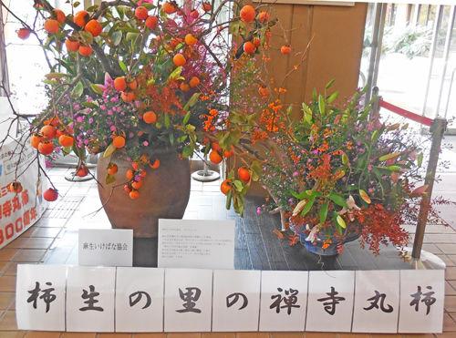 0禅寺丸柿関連ロビー展示3500