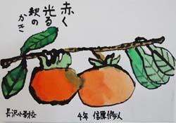 0柿の絵_250