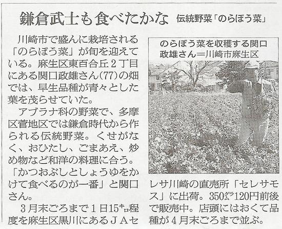 のらぼう菜朝日250313_edited-1
