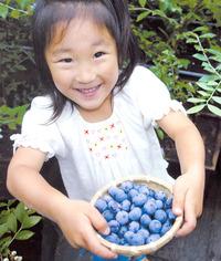 女の子・収穫