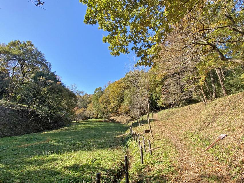 0海道特別緑地保全地区850