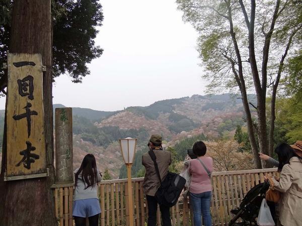 0吉水神社からの眺め