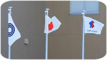 0国旗350