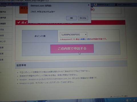 DSC00204[1]