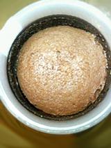 ふんわりチョコケーキ2