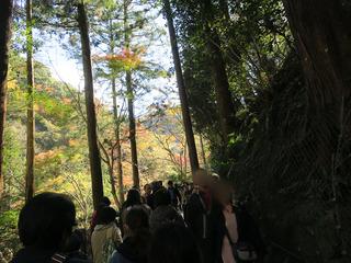 2018箕面の滝