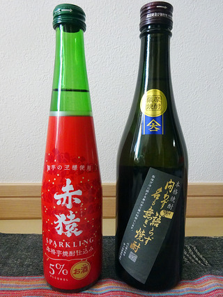 kagoshimam50