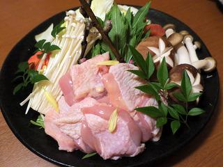 yoshikawa21