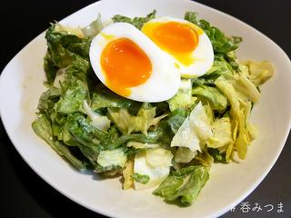 lettuce_anchobi