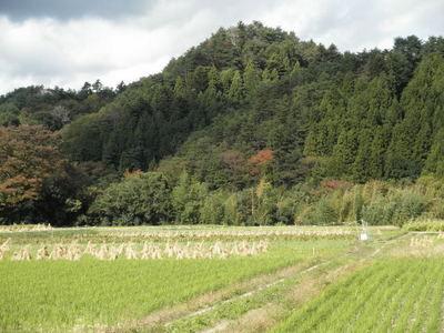 福島の里山から就農だより