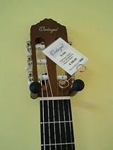 フランクフルトのギター1