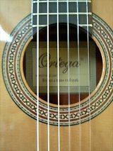 フランクフルトのギター2