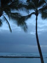 朝のハワイ