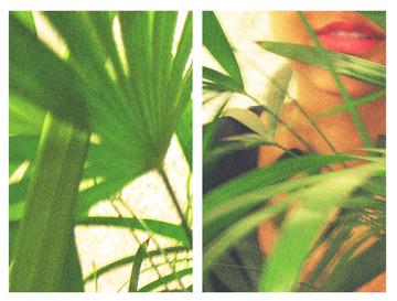 collageblog3