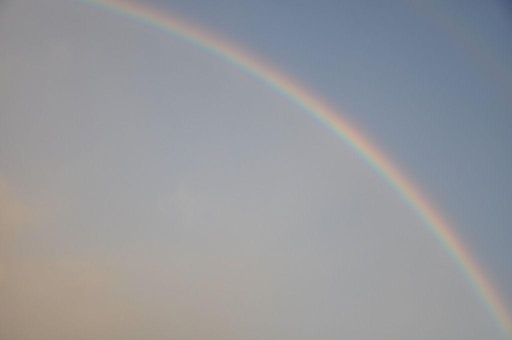 土曜日の虹4