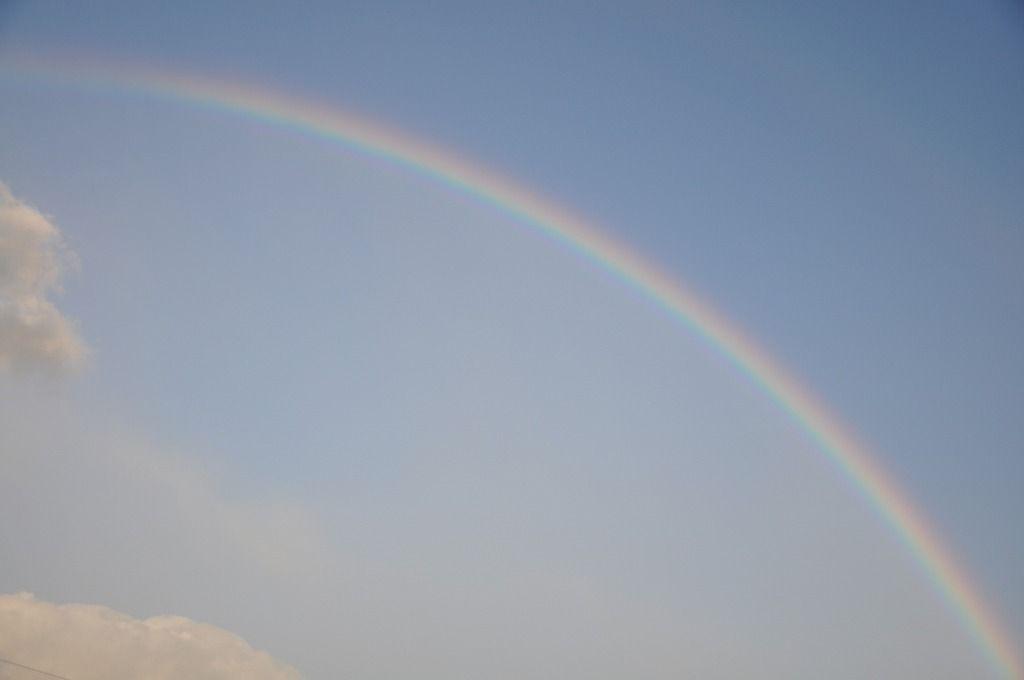 土曜日の虹6